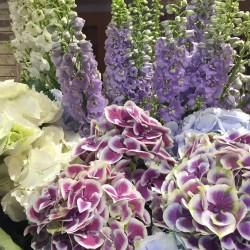 floristeria-Hochzeitsblumen und Blumensträuße-Berlin-6