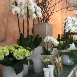 floristeria-Hochzeitsblumen und Blumensträuße-Berlin-3