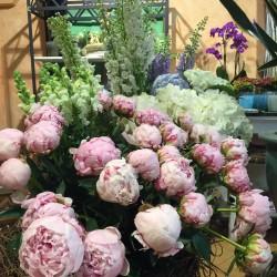 floristeria-Hochzeitsblumen und Blumensträuße-Berlin-5