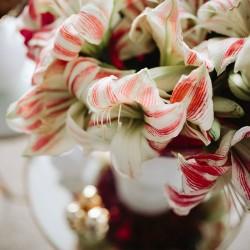 BLOOMY DAYS-Hochzeitsblumen und Blumensträuße-Berlin-3