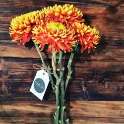 BLOOMY DAYS-Hochzeitsblumen und Blumensträuße-Berlin-4