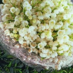 Blumen Komander-Hochzeitsblumen und Blumensträuße-München-4