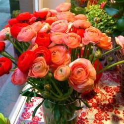 Blumen Wind-Hochzeitsblumen und Blumensträuße-Köln-6