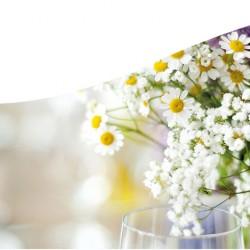 Margret Pleß Blumendekorationen-Hochzeitsblumen und Blumensträuße-Hamburg-3