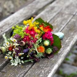 Raphaela Gatzen Floristik-Hochzeitsblumen und Blumensträuße-Köln-2