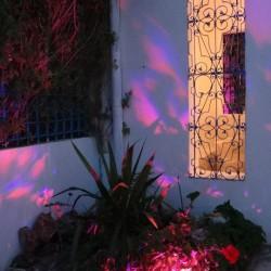 قاعة الفن الصديقة-قصور الافراح-مدينة تونس-5