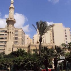 قاعة مسجد علي بن ابي طالب-قصور الافراح-الاسكندرية-1