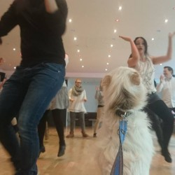 Die Tanzschule am Deutschen Theater-Hochzeitstanzkurse-München-1
