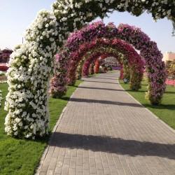 الريتز كارلتون  مركز دبي المالي العالمي-الفنادق-دبي-3