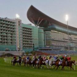 نادي سباق دبي-الحدائق والنوادي-دبي-2