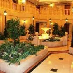 كارلتون بالاس دبي-الفنادق-دبي-4