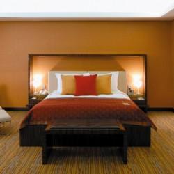 فندق راديسون بلو، مدينة دبي للإعلام-الفنادق-دبي-6