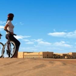 فندق تلال ليوا-الفنادق-أبوظبي-3