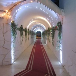 لامات الافراح الحمامات-قصور الافراح-مدينة تونس-5