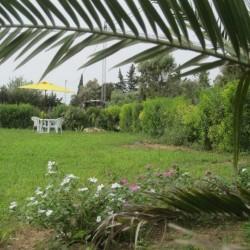 السويسي-الحدائق والنوادي-مدينة تونس-3