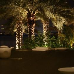 مطعم نوبو-المطاعم-دبي-6