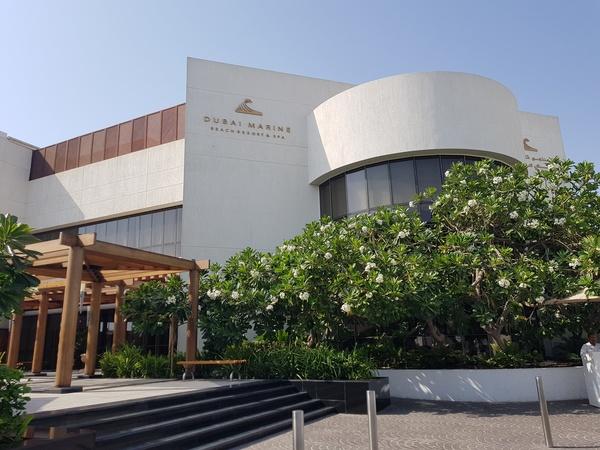 فندق دبي بيتش منتجع و سبا - الفنادق - دبي