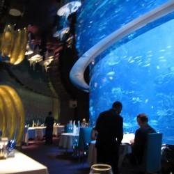 المحارة-المطاعم-دبي-6