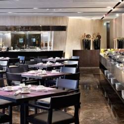 فندق ميليا دبي-الفنادق-دبي-5