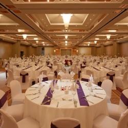 فندق كراون بلازا-الفنادق-دبي-6