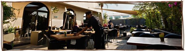 مطعم و كافيه لييم تري - المطاعم - دبي