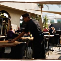 مطعم و كافيه لييم تري-المطاعم-دبي-1