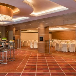 فندق شيراتون كريك دبي-الفنادق-دبي-3