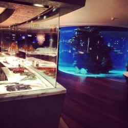 اكويريوم اند فاينز واين بار-المطاعم-دبي-5