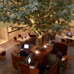 فندق جراند سنترال دبي-الفنادق-دبي-5