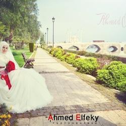 المصور أحمد الفقي-التصوير الفوتوغرافي والفيديو-القاهرة-5