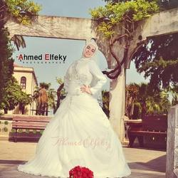 المصور أحمد الفقي-التصوير الفوتوغرافي والفيديو-القاهرة-4
