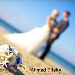 المصور أحمد الفقي-التصوير الفوتوغرافي والفيديو-القاهرة-2