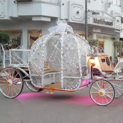 الحوفى ليموزين-سيارة الزفة-القاهرة-1