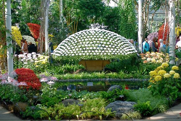 حديقة رافلز النباتية - الحدائق والنوادي - دبي