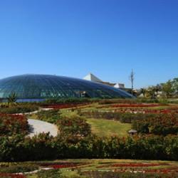 حديقة رافلز النباتية-الحدائق والنوادي-دبي-3