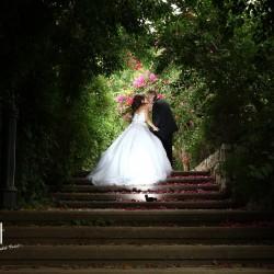 دي لايت-التصوير الفوتوغرافي والفيديو-بيروت-1