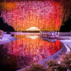 كارولينا باك-التصوير الفوتوغرافي والفيديو-الدوحة-1