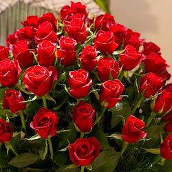 سبيشال روز-زهور الزفاف-الدوحة-3