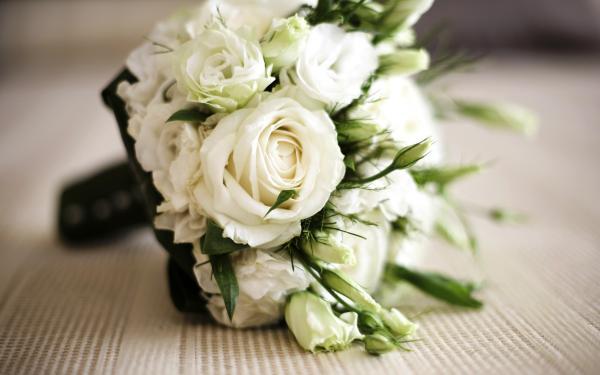 بيت الزهور - زهور الزفاف - القاهرة
