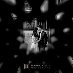 هاري كروز فوتوغرافي-التصوير الفوتوغرافي والفيديو-دبي-2