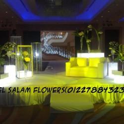 زهور السلام-زهور الزفاف-القاهرة-5