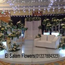 زهور السلام-زهور الزفاف-القاهرة-1