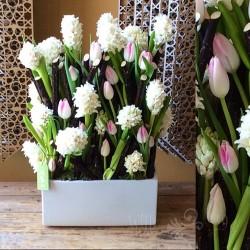 ودّ-زهور الزفاف-دبي-6