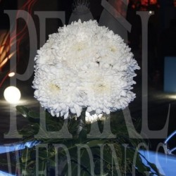 بيرل-كوش وتنسيق حفلات-الاسكندرية-3