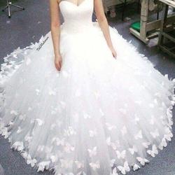 مصطفي قطاشه-فستان الزفاف-القاهرة-1