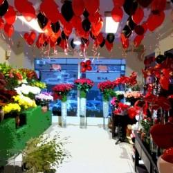 فليرتيشن-زهور الزفاف-القاهرة-4