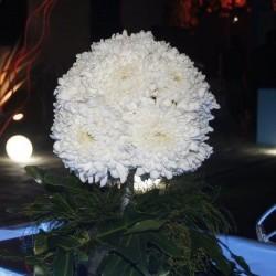 فلورينا-زهور الزفاف-القاهرة-3