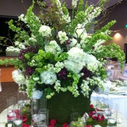 فلورينا-زهور الزفاف-القاهرة-6