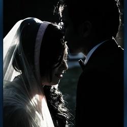 سيفين سمايلز-التصوير الفوتوغرافي والفيديو-الدوحة-1