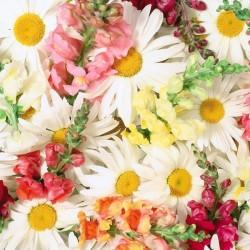ابسكيل اند بوش-زهور الزفاف-دبي-1